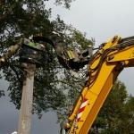 Aanbrengen van een berlinerwand met partner van Schie onder een hoogtebeperking door bomen